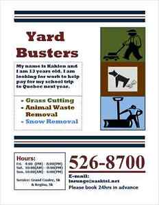 YARD CARE GRASS CUTTING / DOG WASTE / SNOW REMOVAL