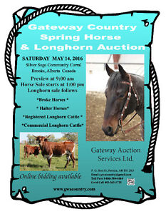 Gateway Country Spring Horse & Longhorn Auction