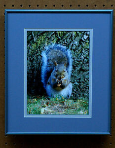 professionally framed and matted pictures  SALE Sarnia Sarnia Area image 8