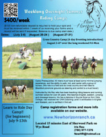 Overnight Horseback riding camps and learn to ride day camp
