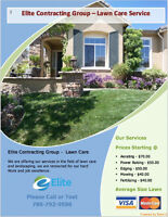 LAWN CARE/SPRING CLEAN UP/MOWING/AERATING/PRESSURE WASHING