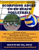 Scorpions Adult Recreational Volleyball League In Cambridge