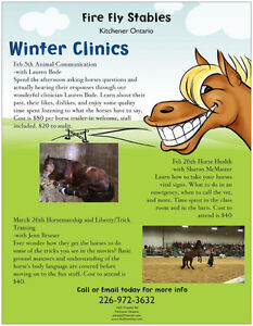 Winter Clinics Coming Up @ Fire Fly Stables Kitchener / Waterloo Kitchener Area image 1