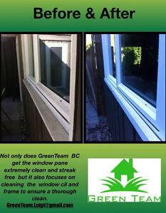 Gutter Scrubbing And Yard Clean Up! Cleaning W/O Chemicals North Shore Greater Vancouver Area image 6