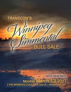 Transcon's Winnipeg Simmental Bull Sale