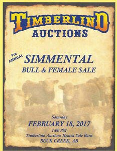 BS RANCH BULLS SELLING AT TIMBERLIND AUCTIONS FEB.18, 2017