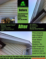 Monthly Window Cleaning (No Chemicals/Ladders)