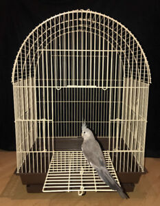 Dome Bird Cage with Stand - Large