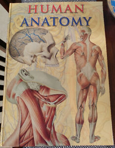 Book, Giant Book on Human Anatomy 24x17in 160pages ONLY $30