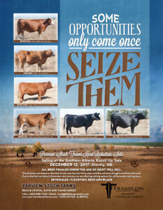 Southern Alberta Round-Up Group 24th Annual Bull & Female Sale