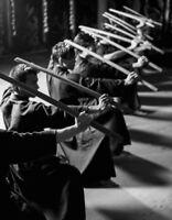 WANTED: Seeking Japanese Sword Arts teacher