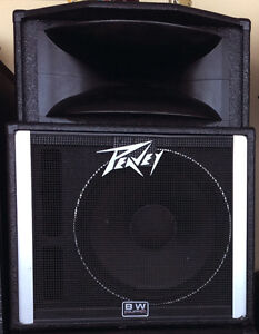 Peavey SP-2A Precision transducer speaker 2units-left and right