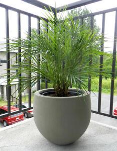 ★★ NEUF ★★ Jardinière ou pot à plante/fleurs en ciment ★★ NEUF ★