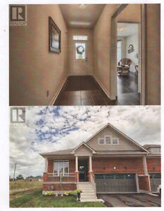 Brand New House bungalow