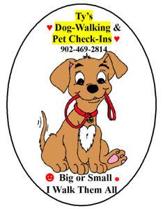 ** ☼☻Tys Dog Walking & Pet Check-Ins*Dartmouth-Mature Man ☻☼ **