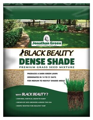 Jonathan Green 10622 Dense Shade Grass Seed Mixture, Covers Up To 600 Sqft, 1 lb (Dense Shade Grass Seed)