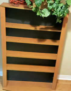 DVD/CD shelf