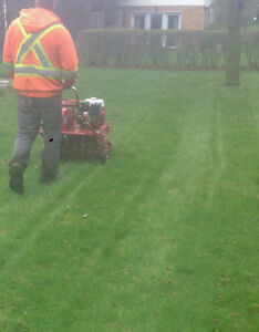 Lawn care & property maintenance services Kitchener / Waterloo Kitchener Area image 7