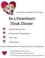 Be a Sweetheart - Save a Puppy
