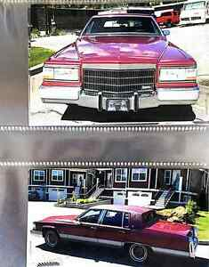 Classic Cadillac up for grabs!