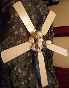 52 inch Ceiling fan / with remote
