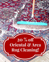 RugDistrict.com Oriental & Area Rug Cleaning