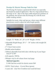 Electric Massage Therapy Table