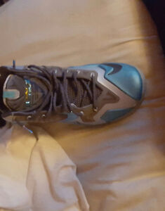 Selling Charles barkley Posite max Lebron Gamma 11s with box