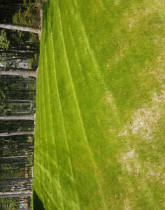 Booking for weekly lawn maintenance and construction