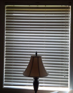 Pair of Faux Wood blinds