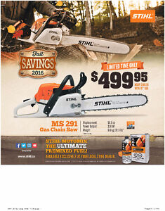 "BROTHERS TWO SMALL ENGINES INC. STIHL MS291 WITH UPGRADE 18"" BAR"