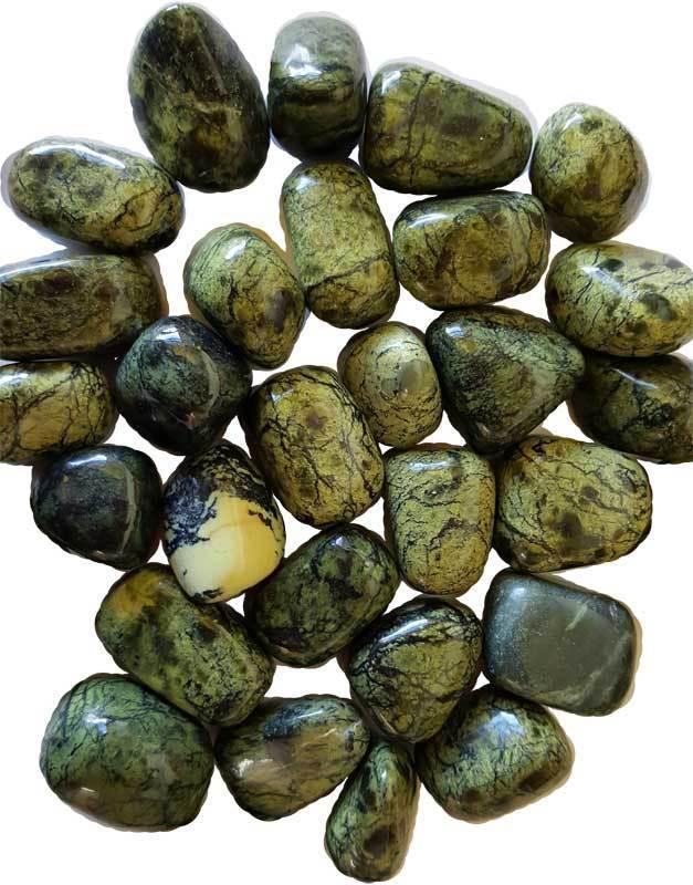 Bulk 1 lb Green Asterite Serpentine Tumbled Stones Chakra Reiki Crystal Healing