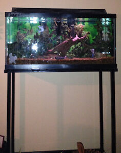 Custom Made Aquarium, Storage Base and stand Kawartha Lakes Peterborough Area image 1