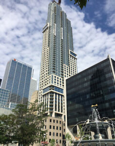 Spacious One Bedroom + Den condo in downtown (furnished option)
