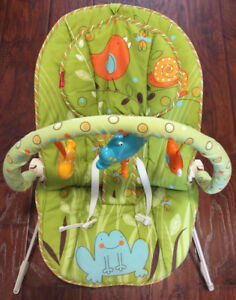 Fisher Price Comfy Time Bouncer Green Meadows
