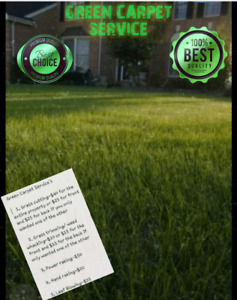 GRASS CUTTING AND YARD CLEANUP SERVICES