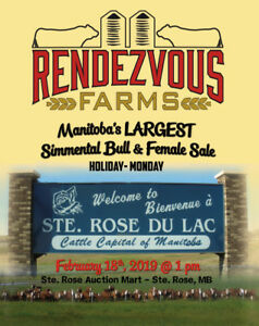 Rendezvous Farms 15th Annual  Simmental Bull & Female Sale