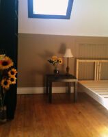 Bachelor APT for rent in Downtown Hamilton Everything included