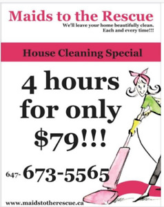 Maids to the Rescue: 4 hrs for only $79!!! Housecleaning Special