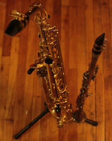 Qualified teacher: Saxophone, Piano, Clarinet, Theory Lessons