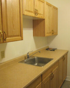 CENTRALLY LOCATED BACHELOR APT