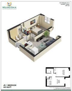 1 bedroom apt for lease takeover - $999 all inclusive. Downtown