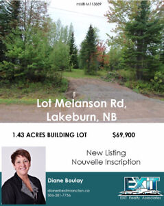 Wooded lot in a new executive neighborhood