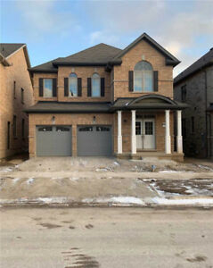 Brand new 4 Bedrooms Whole  House for Rent in Brampton  !!