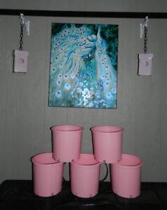 5 BIG Pink Planters+2 Blushing Pink Bird Houses OH MY!