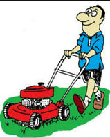 Lawn care and services