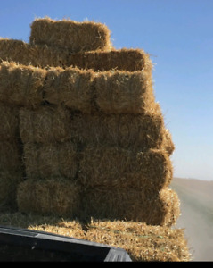 Square Straw Bales