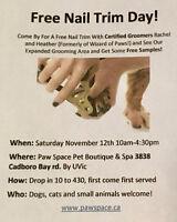 Free Nail Trim Day At Paw Space
