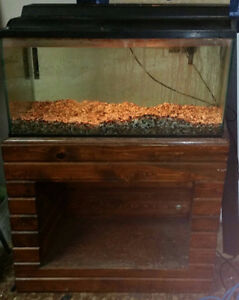 Fish Tank and Wood Stand