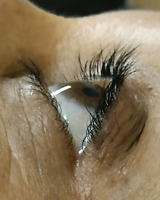Eyelash extensions or lift and tint.  Very very cheap